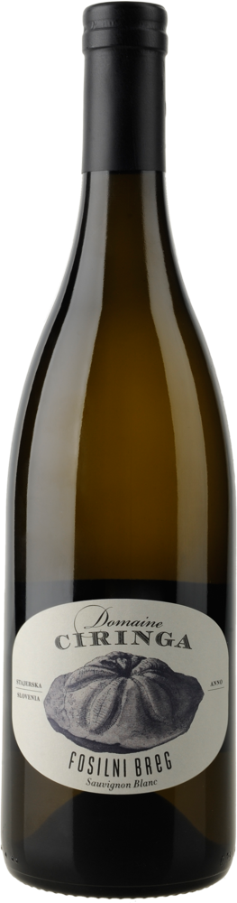 Fosilni Breg Sauvignon Blanc